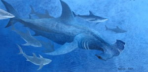 Requin marteau, peinture en immersion par Malvina