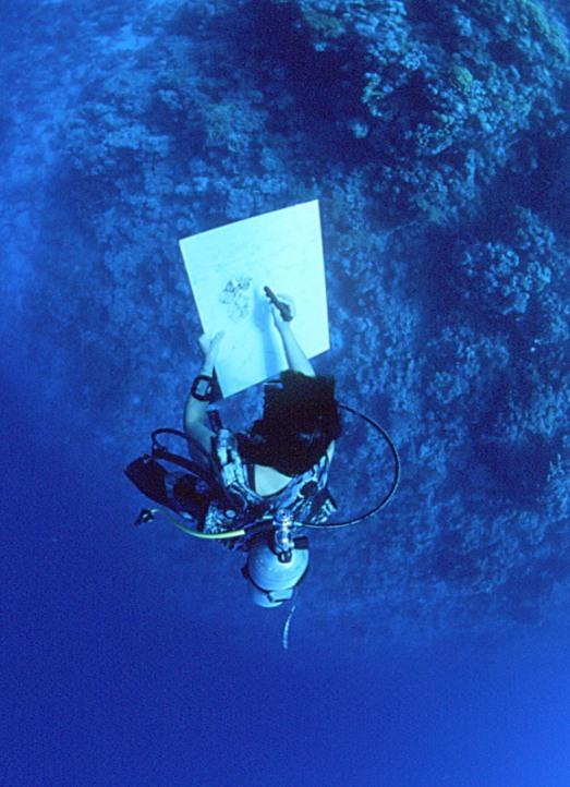 Peinture en suspension en Méditerranée. Malvina, peintre en immersion