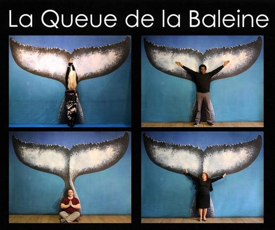 Montage de Malvina pour la performance de la Queue de la Baleine