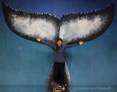 290 Tehea Mambré avec La Queue de la Baleine aux Portes Ouvertes des Ateliers d'Artistes de Montreuil.
