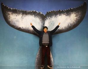 Constantin Lion à l'atelier à Montreuil devant La Queue de la Baleine.
