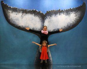 343 Laure et Zoé Gonès avec La Queue de la Baleine au Salon de la plongée/Paris