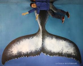 Bernard Andrieu devant La Queue de la Baleine.