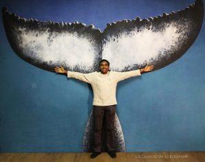 Coan Parwez à l'atelier devant La Queue de la Baleine