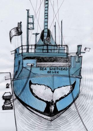 Conception du projet de la queue de la Baleine.