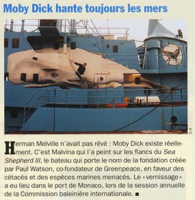 Article dans Mer & océan de ma fresque sur le Sea Shepherd