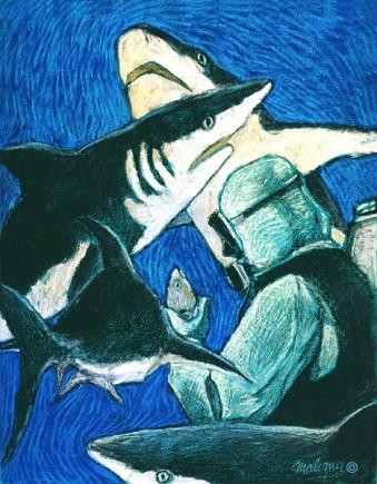 Feeding de requins gris aux Bahamas à Nassau