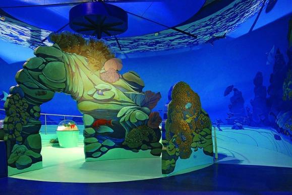 Les secrets de la Mer Rouge à Océanopolis