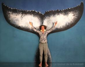 Isoline avec La Queue de la Baleine