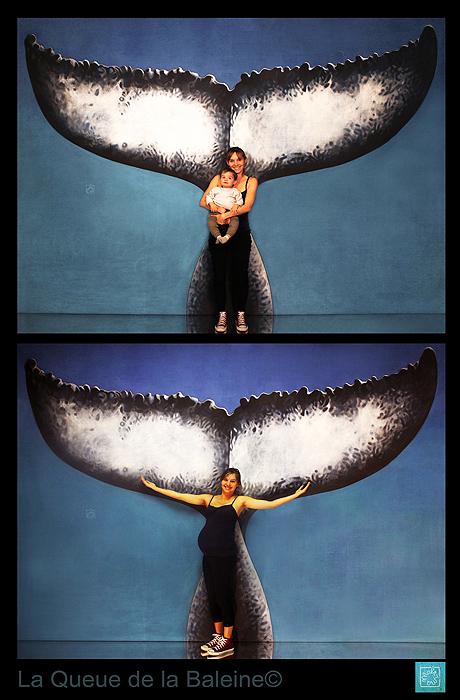 Né sous le signe de la Baleine