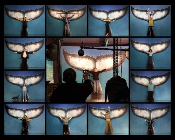 Pour les baleines 72